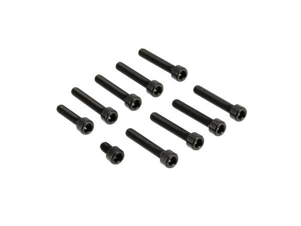 10070562 Set: Aluminium-Schrauben, Innensechskant in Schwarz für Kupplungs- und Lichtmaschinendeckel Motor S51 - Bild 1