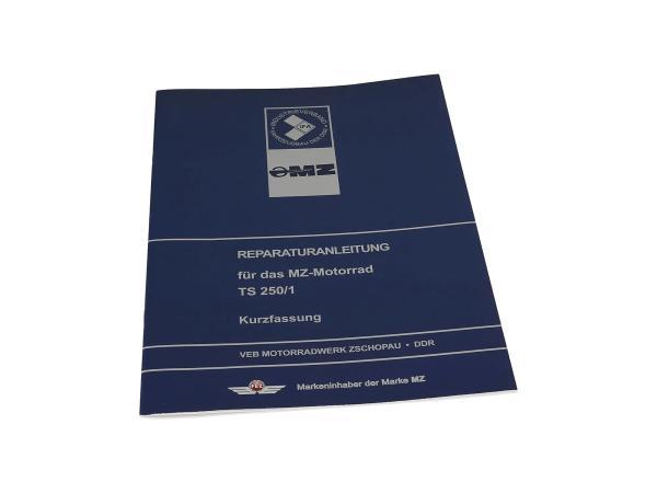 10005518 Reparaturanleitung - Kurzfassung für TS 250, TS250/1 - Bild 1