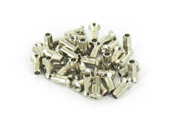 Set: spoke nipple M3 in stainless steel look - for SR1, SR2