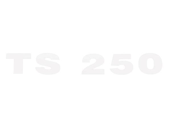 """Schriftzug (Folie) """"TS 250"""" chrom für Seitendeckel - für MZ TS250"""