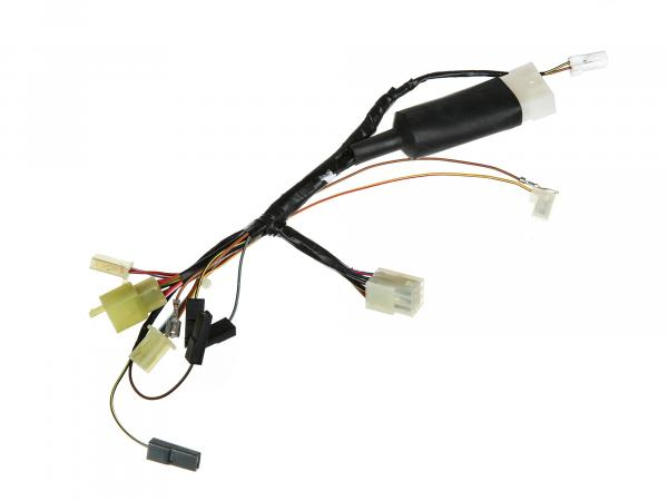 Central wiring harness MS 125