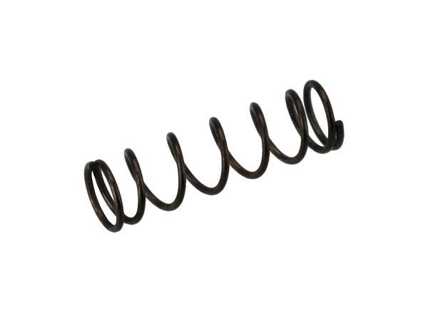 10005441 Feder - für Gemischregulierschraube des Vergasers 16N1, 22N, 24N - Bild 1