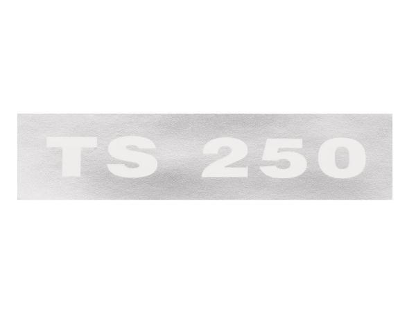 """Schriftzug (Folie) """"TS 250"""" chrom negativ für Seitendeckel - für MZ TS250"""