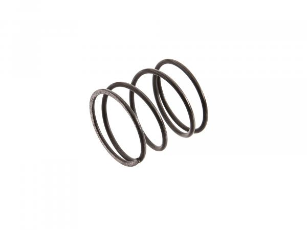 Spring for oil filter insert 125RS