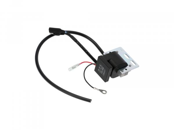 10070243 PVL Zündspule analog, 458 105 - Bild 1