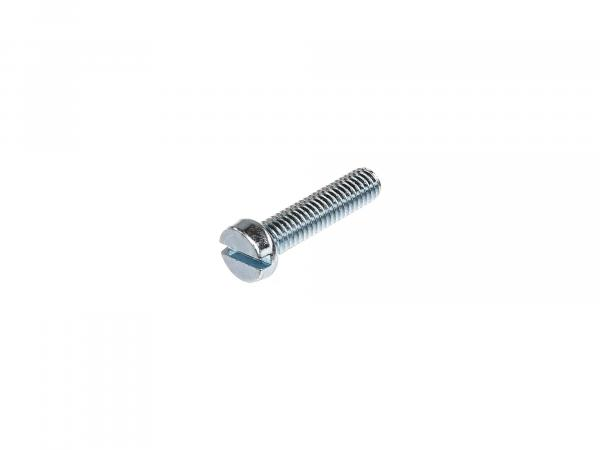 Slotted cheese head screw M6x25 - DIN84