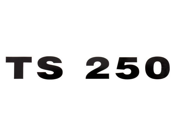 """Schriftzug (Folie) """"TS 250"""" schwarz für Seitendeckel - für MZ TS250"""