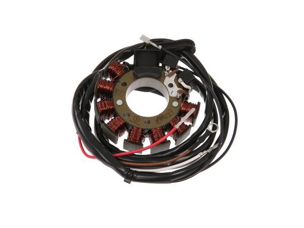 10059501 Stator Vape A70S-10 (12V 100W) - Bild 1